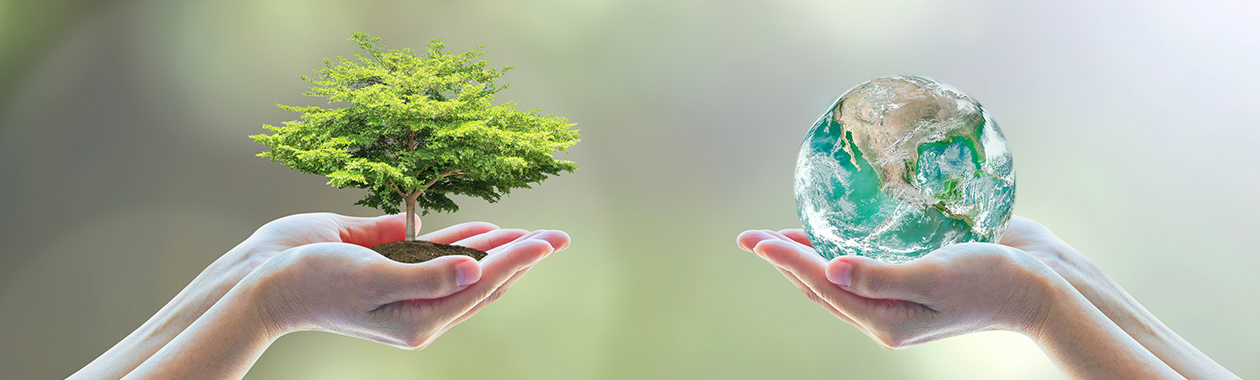 ניהול מדיניות משאבי טבע וסביבה