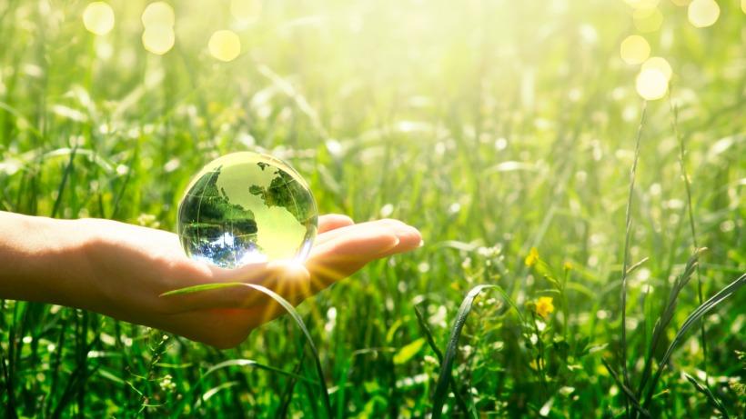 תכנית מוסמך בניהול ומדיניות משאבי טבע וסביבה פתוחה להרשמה