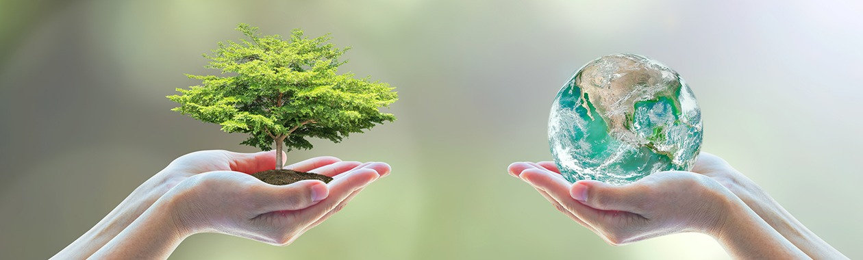 תכנית בניהול ומדיניות משאבי טבע וסביבה