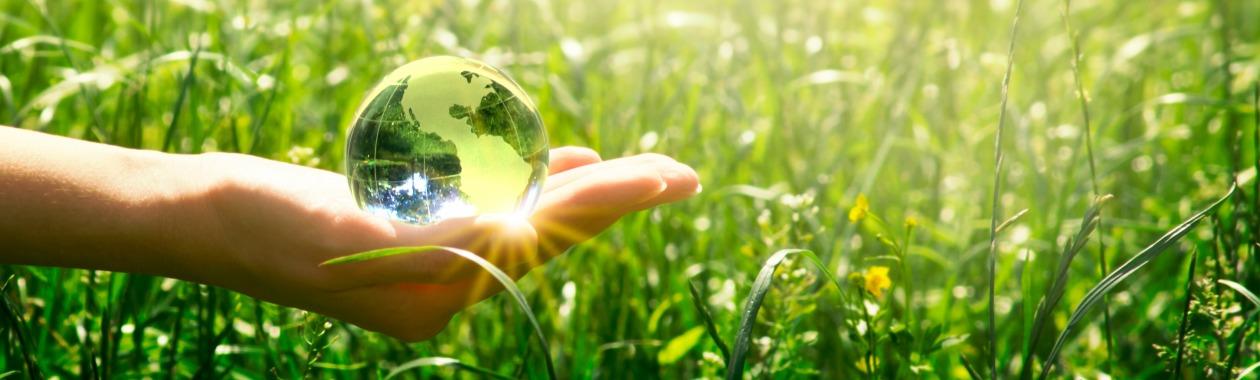 ניהול ומדיניות משאבי טבע וסביבה - התמחות בתכנון עירוני ואזורי