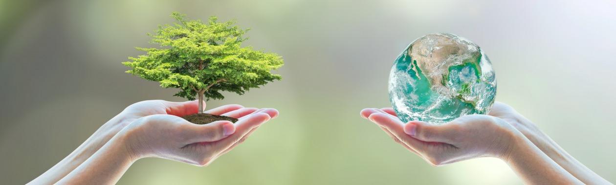 תכנית בניהול ומשאבי טבע